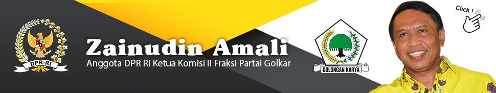 Zainudin Amali